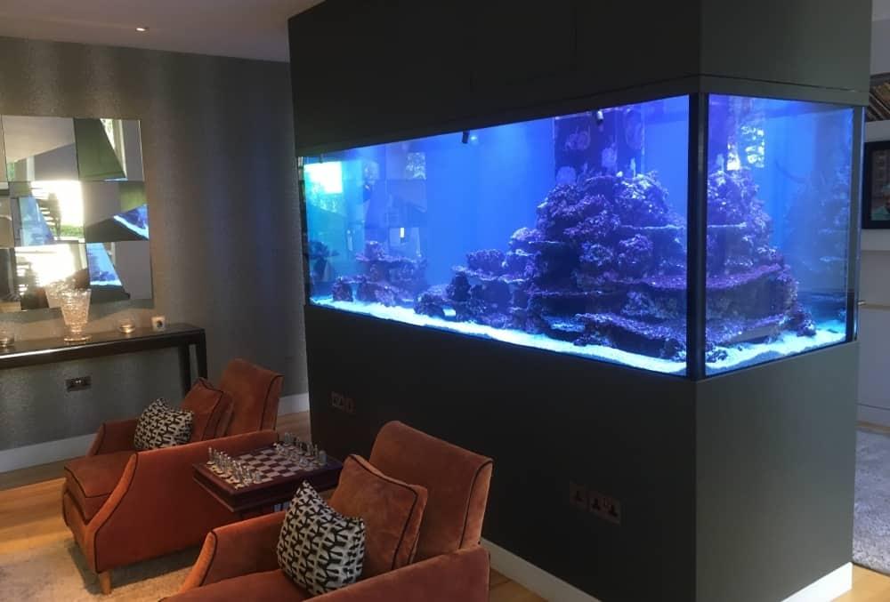 Tropical Marine Reef aquarium
