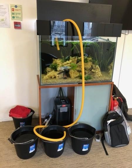 aquarium upgrade