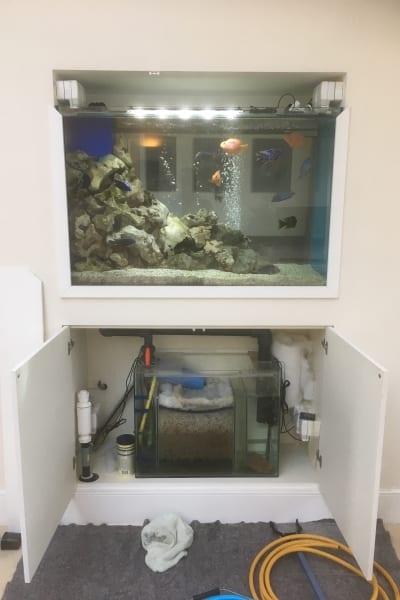 fishtank problem solving