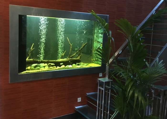Freshwater-hardscape-aquarium