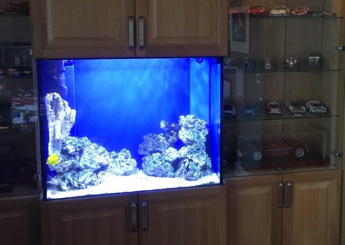 Saltwater-Hardscape-aquarium