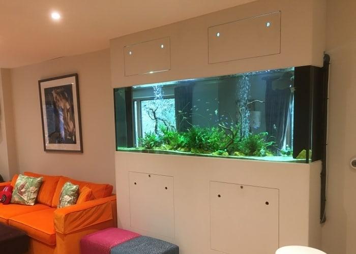 Tropical-Planted-aquarium